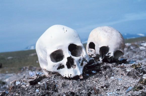 Punuk.Alaska.skulls