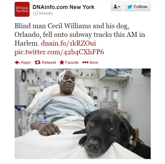 Cecil Williams fell onto the subway tracks with his guide dog Orlando in New York City.